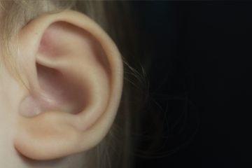telinga bernanah