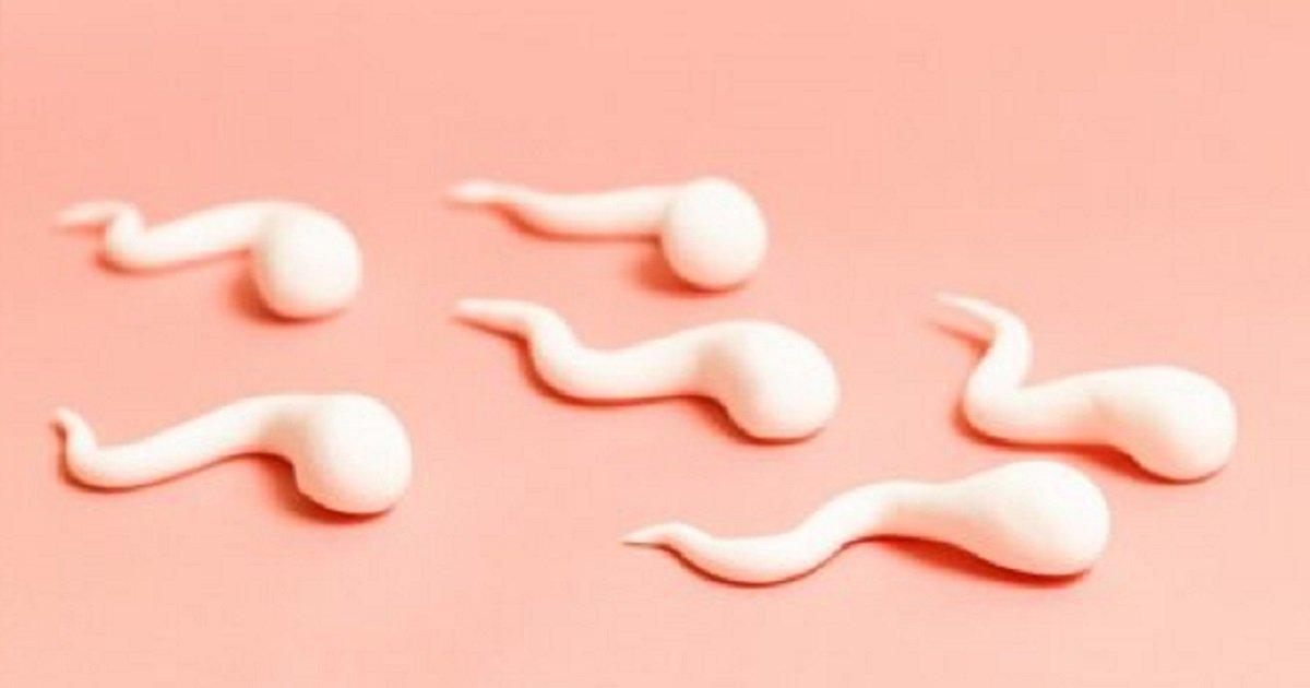 kurang sperma