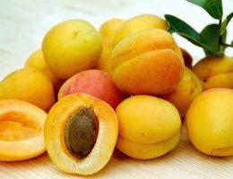 khasiat buah aprikot