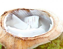 khasiat air kelapa
